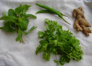 Pudina Chutney Ingredients
