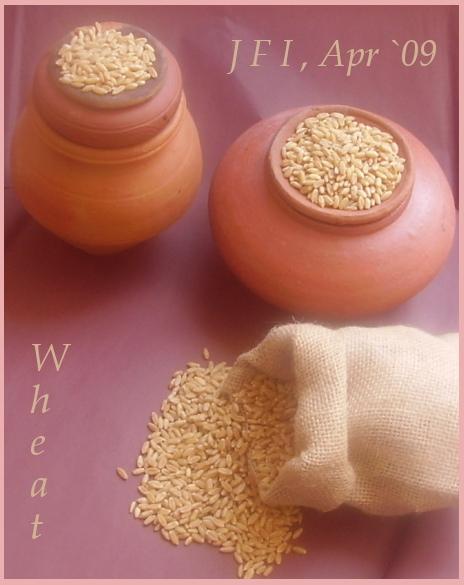 wheat_image_bordered