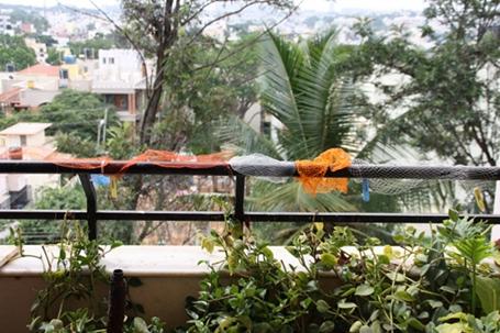Nylon net bags placed along railings